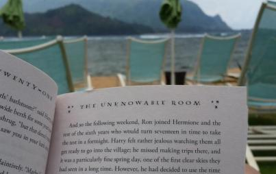 Reading in paradise. Image: Jody Amable.