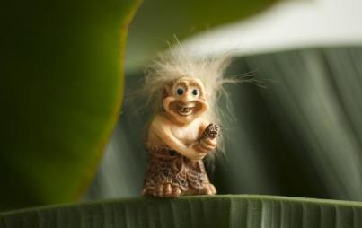 TROLL. The cute kind.